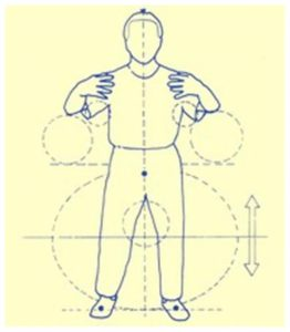 ichuan-eu-kropsholdning-2